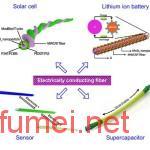 复旦大学研究出碳纳米管静脉发电机可为心脏起搏器提供能量