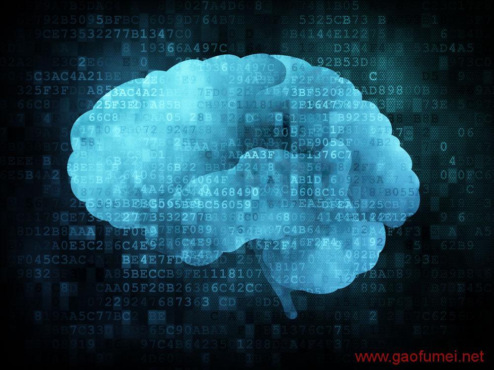 DARPA研发大脑神经刺激设备把猕猴的学习速度提高了40%