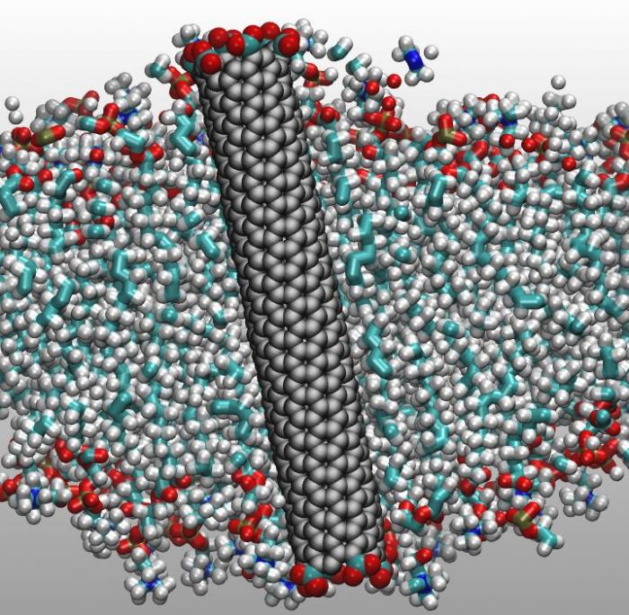 加州大学研发纳米碳管过滤系统有望降低海水淡化成本