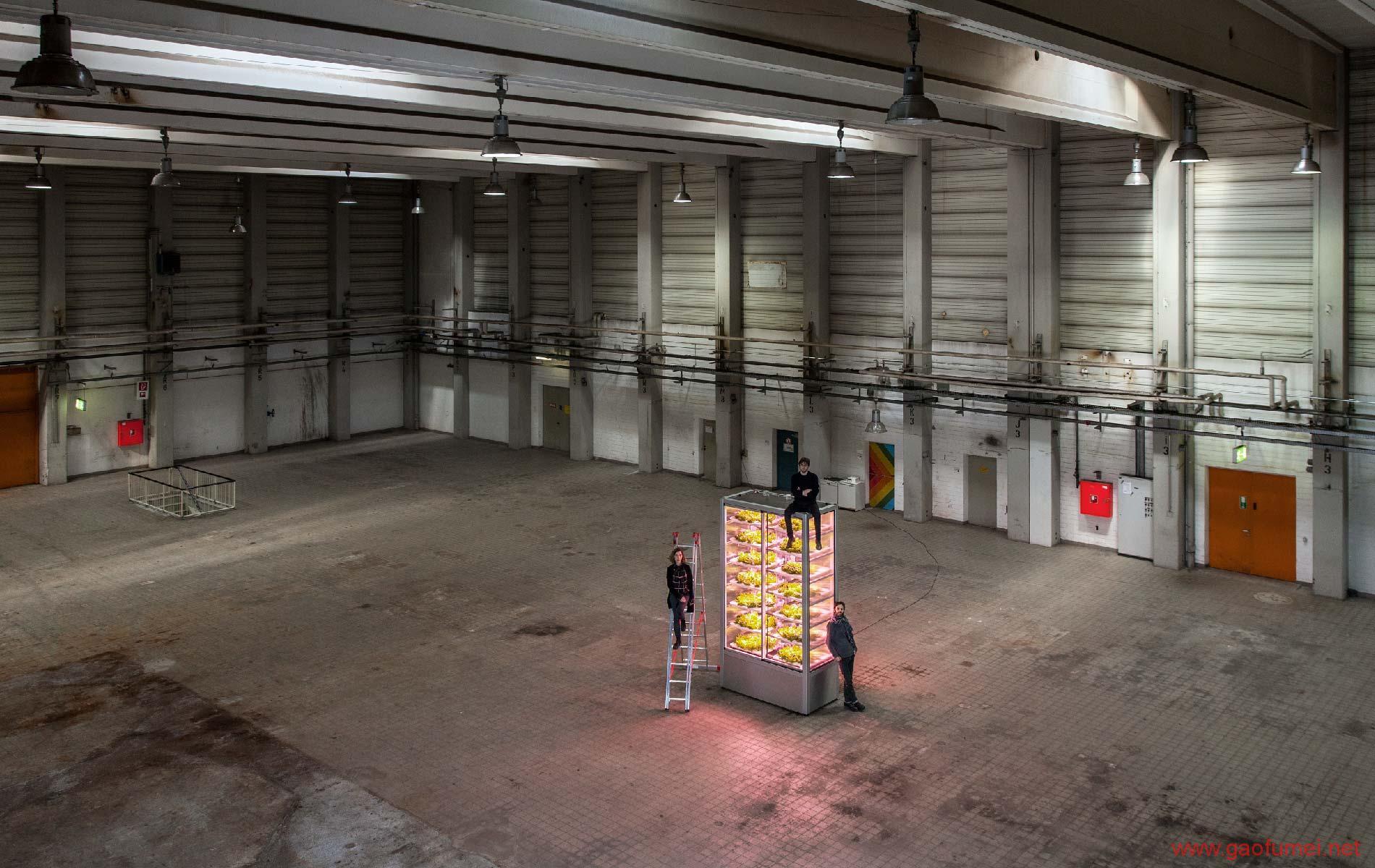 Infarm设计出一款使用机器学习技术的便利店垂直农场为消费者提供超新鲜的食材