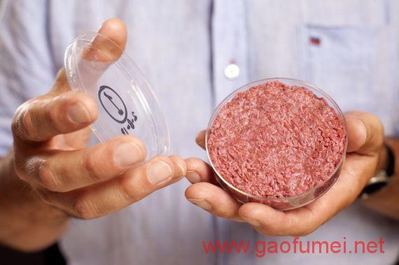 Hampton Creek收购人造肉原始专利预计2018年上市人造肉