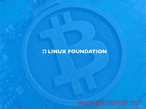 Linux 基金会联合20多家企业打造统一的区块链技术