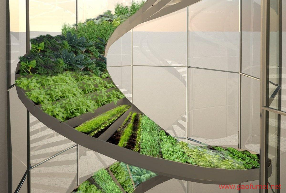 Plantagon在WEF发布植物大厦设计方案上海或将兴建城市农场