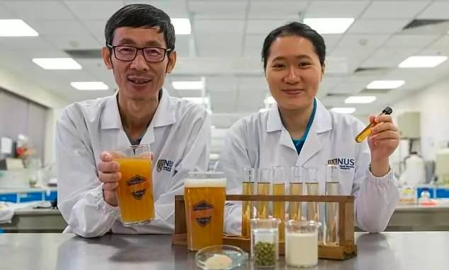 新加坡国立大学研制出益生菌啤酒每100毫升就富含10亿活体益生菌