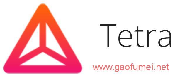 语音转录技术潜力巨大Tetra获得种子轮融资