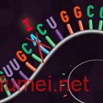 MIT研发基因编辑技术由华裔教授带领团队进行研究