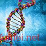 香港基因测序创企Prenetics获4000万美元B轮融资阿里巴巴领投