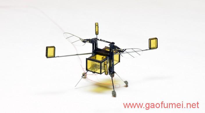 哈佛大学研发出新型蜜蜂机器人RoboBee上天入水无所不能