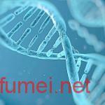 摩德纳大学将基因治疗和植皮结合成功治愈大疱性表皮松解症