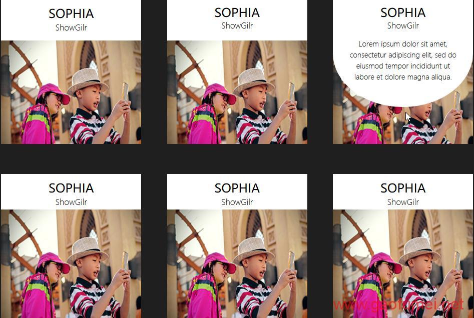 适合图片列表排列的CSS3的鼠标滑入动画效果源码演示