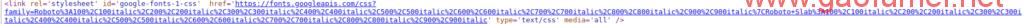 wordpress清除头部加载的谷歌字体引用的案例一